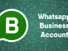 Download WhatsApp Business 2.18.8 APK